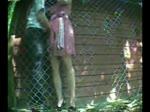 Prise en levrette derrière la cabane